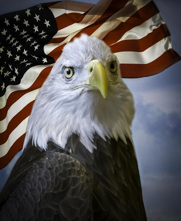 American Eagle Title Insurance Oklahoma City Ok