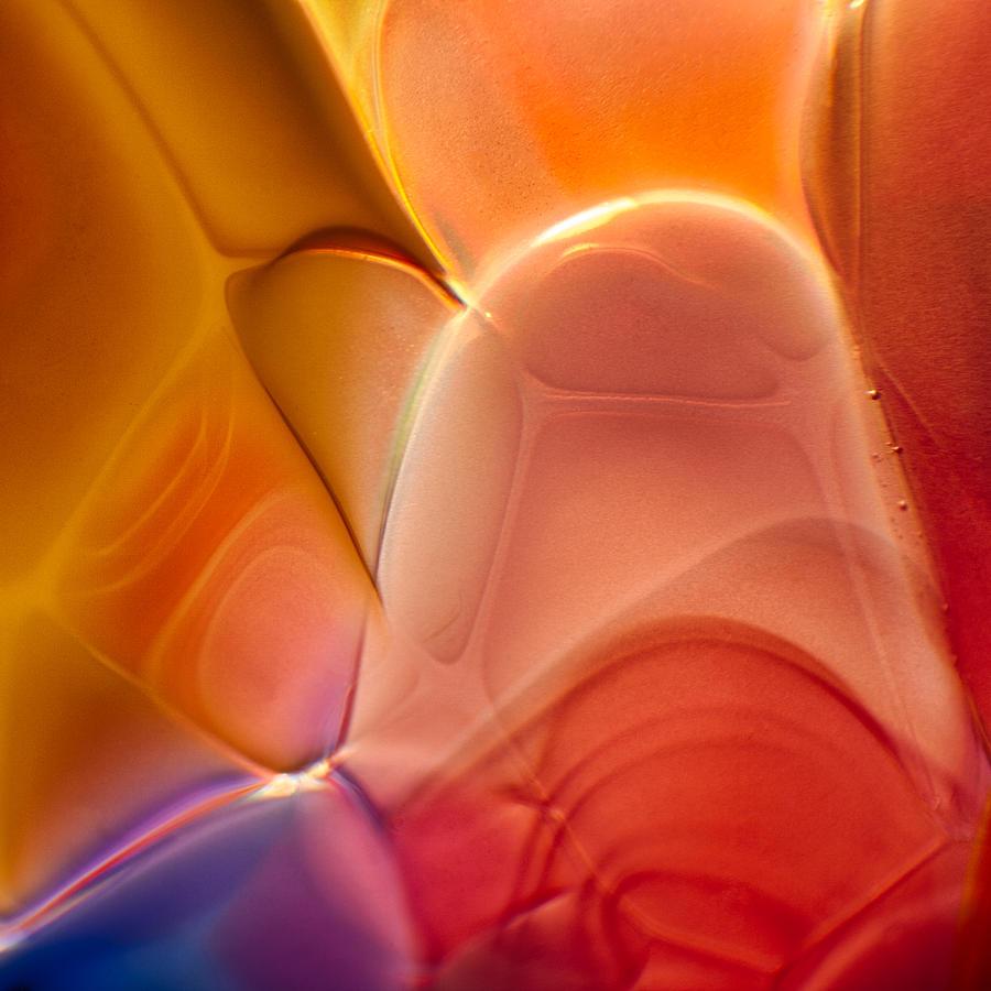 Glass Photograph - Bald Eagle by Omaste Witkowski