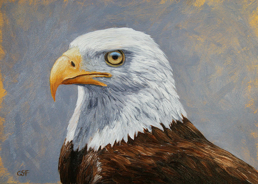 Bald Eagle Portrait Painting  - Bald Eagle Portrait Fine Art Print