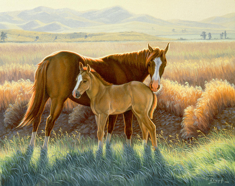 Bald-faced Sorrel And Colt Painting