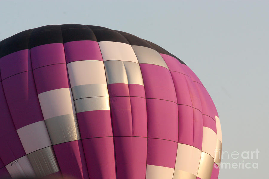 Balloon-purple-7457 Photograph