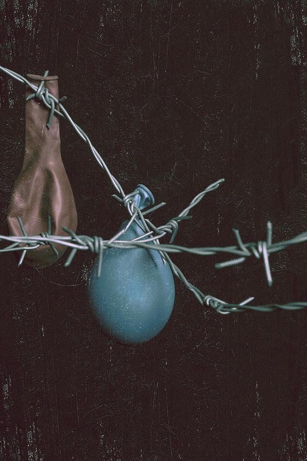 Balloons Photograph - Balloons by Joana Kruse