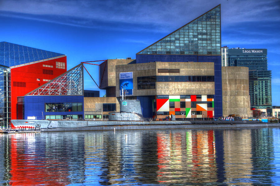 Baltimore Harbor Photograph