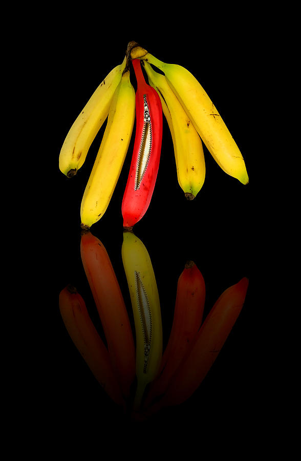 Bananas Photograph  - Bananas Fine Art Print