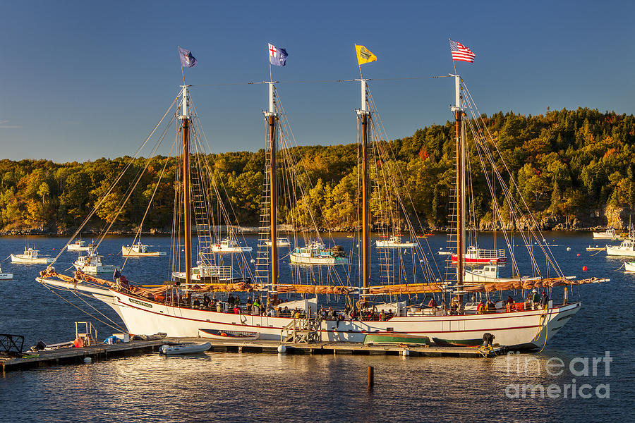 Bar Harbor Schooner Photograph  - Bar Harbor Schooner Fine Art Print