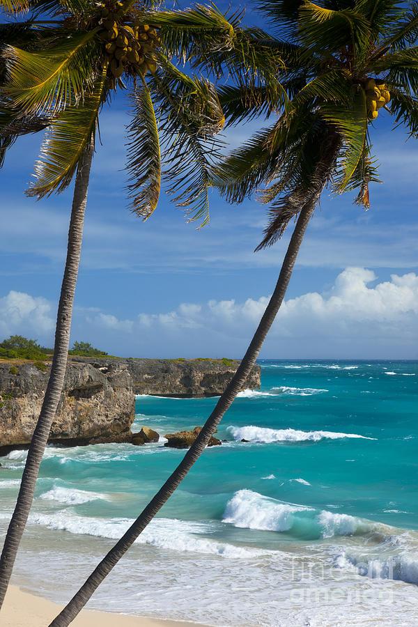 Barbados Photograph