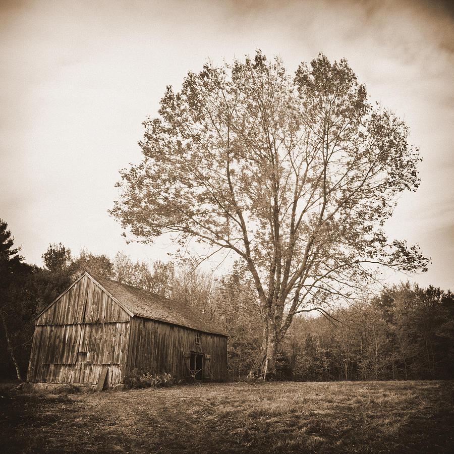 The Skinner Barn: Barn At Wells Lane Photograph By Rebecca Skinner