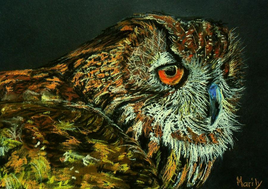 Owl Pastel - Barn Owl by Marily Valkijainen