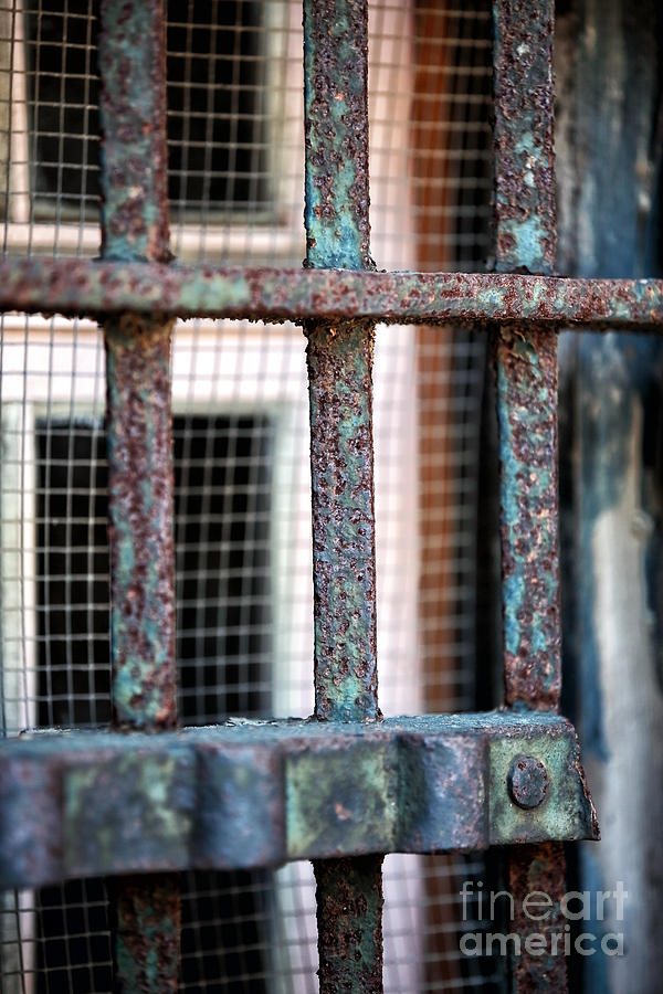 Bars Photograph  - Bars Fine Art Print