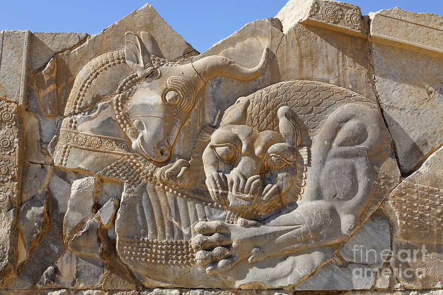 Bas relief carving of a lion hunting bull at persepolis