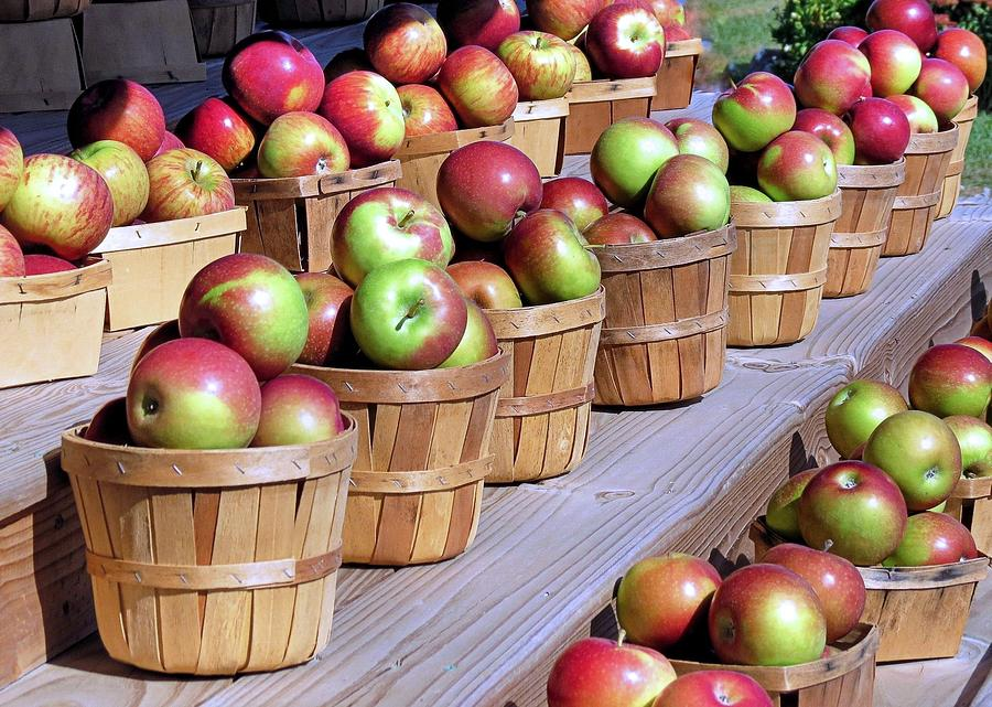 Baskets Or Apples Photograph - Baskets Of Apples by Janice Drew