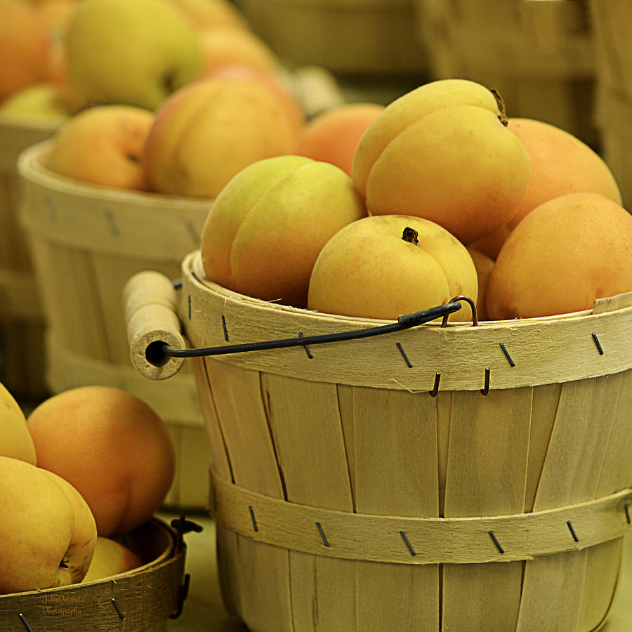 Baskets Of Apricots Squared Photograph