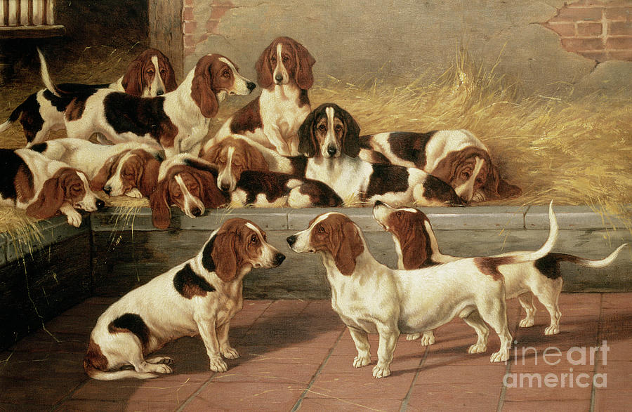 Basset Hounds In A Kennel Painting  - Basset Hounds In A Kennel Fine Art Print