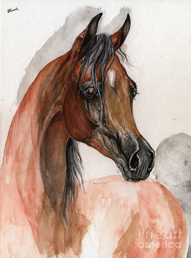 Bay Arabian Horse Watercolor Portrait Painting  - Bay Arabian Horse Watercolor Portrait Fine Art Print