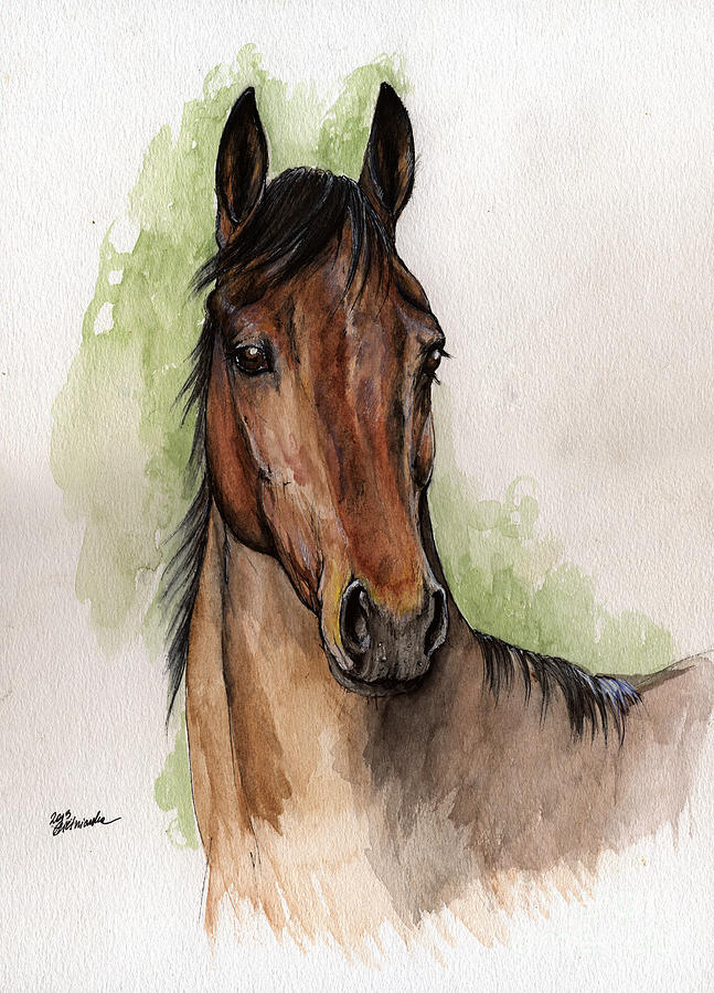 Bay Horse Portrait Watercolor Painting 02 2013 Painting