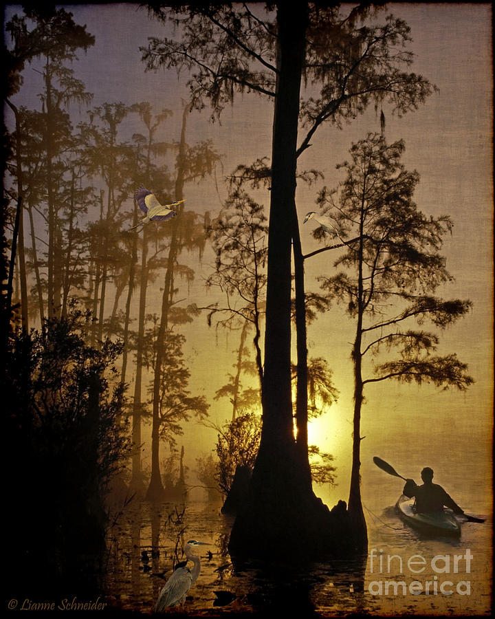 Bayou Sunrise Digital Art