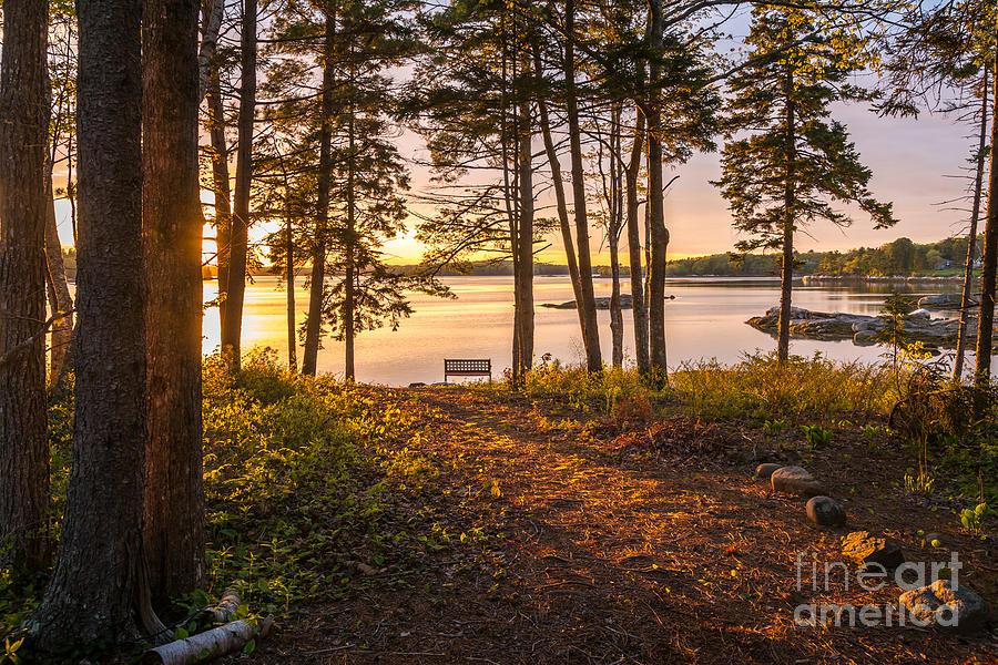 Bayview Sunset Photograph