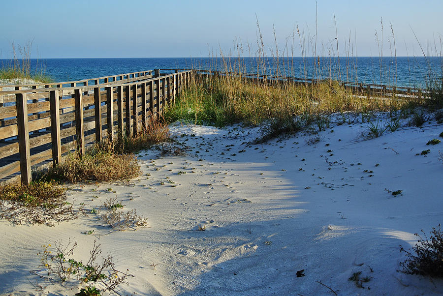 Beach And The Walkway  Digital Art