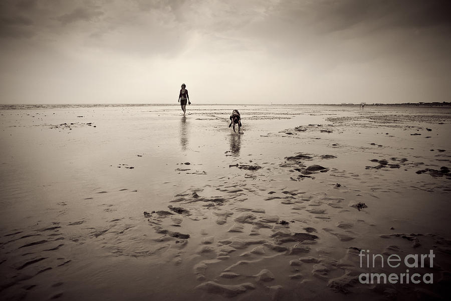 Beach Dog Photograph  - Beach Dog Fine Art Print