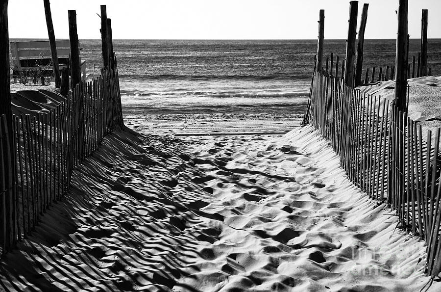 Beach Entry Black And White Photograph