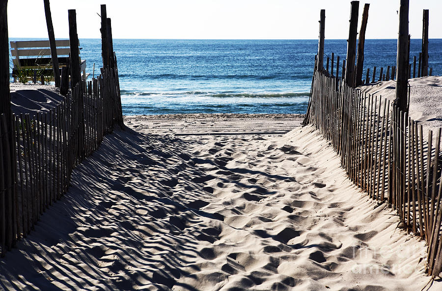 Beach Entry Photograph  - Beach Entry Fine Art Print