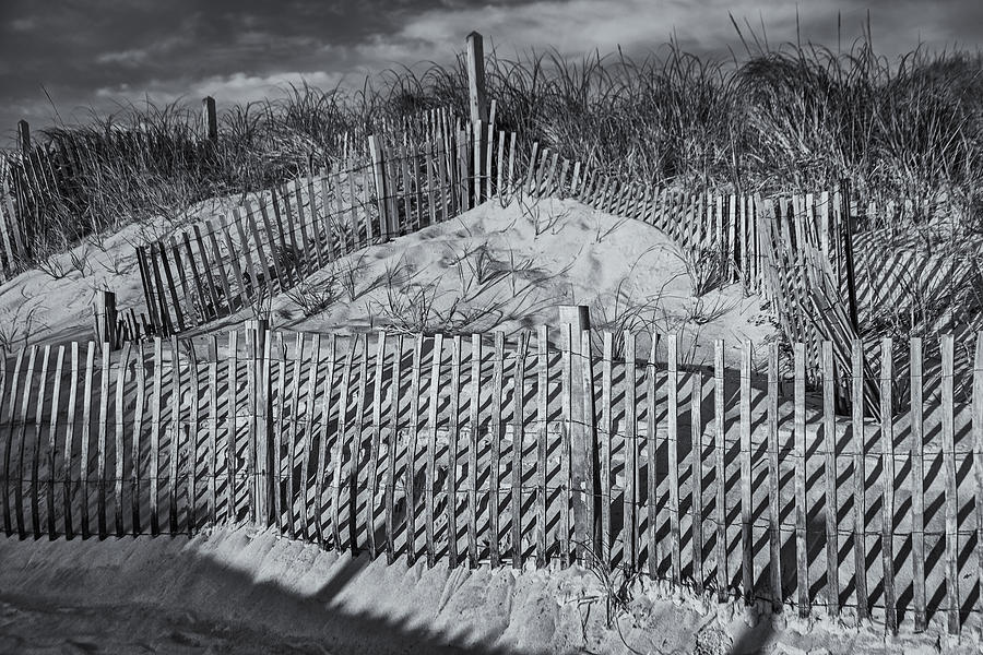 Beach Fence Bw Photograph