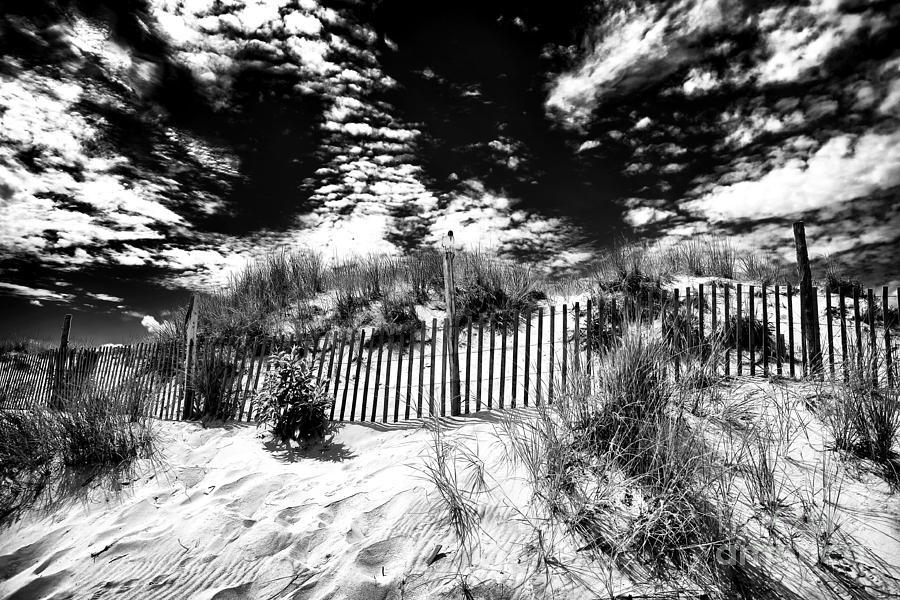 Beach Haven Photograph