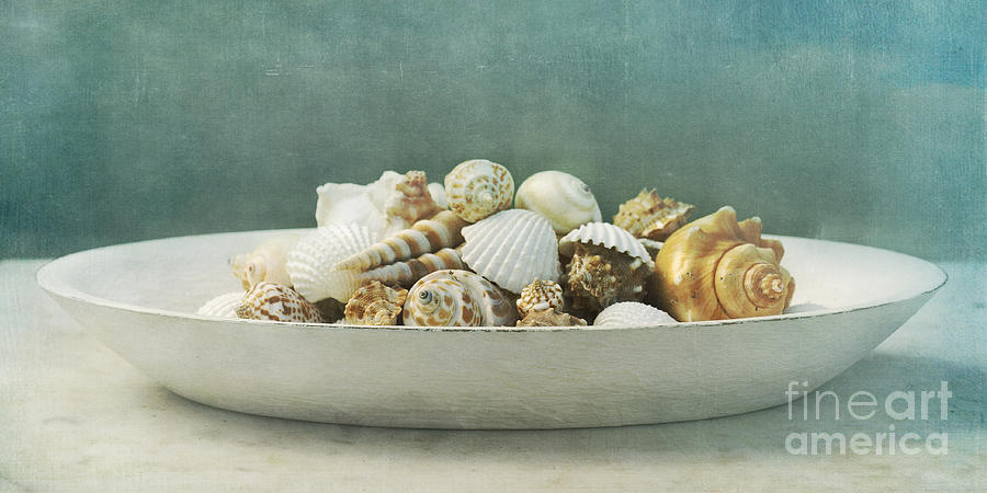 Beach In A Bowl Photograph  - Beach In A Bowl Fine Art Print