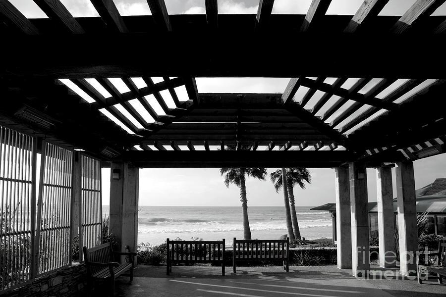 Beach In Del Mar California Photograph