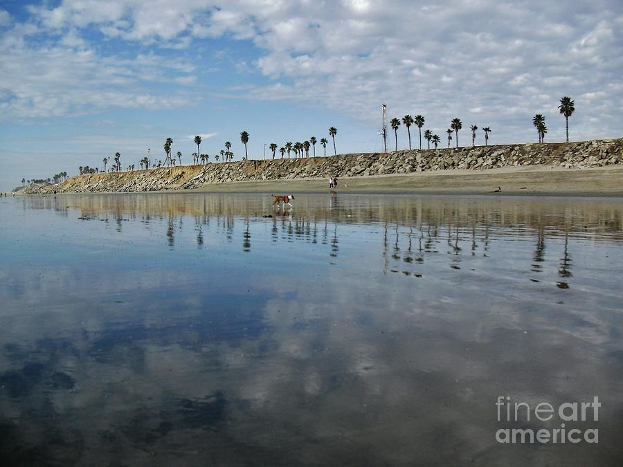 Beach Reflections Photograph  - Beach Reflections Fine Art Print