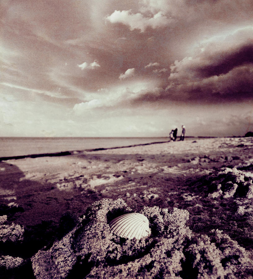 Gray Photograph - Beach Researchers by Florin Birjoveanu