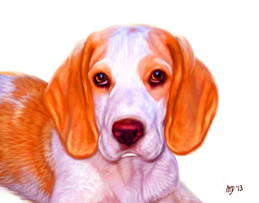 Dog Paintings Painting - Beagle Dog On White Background by Iain McDonald