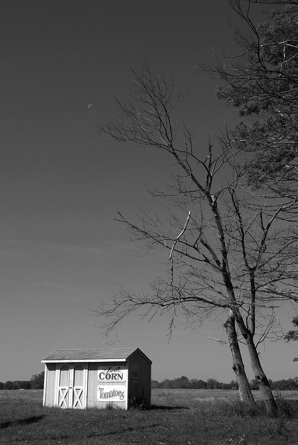 New Jersey Photograph - Bear Tavern Road by Steven Richman