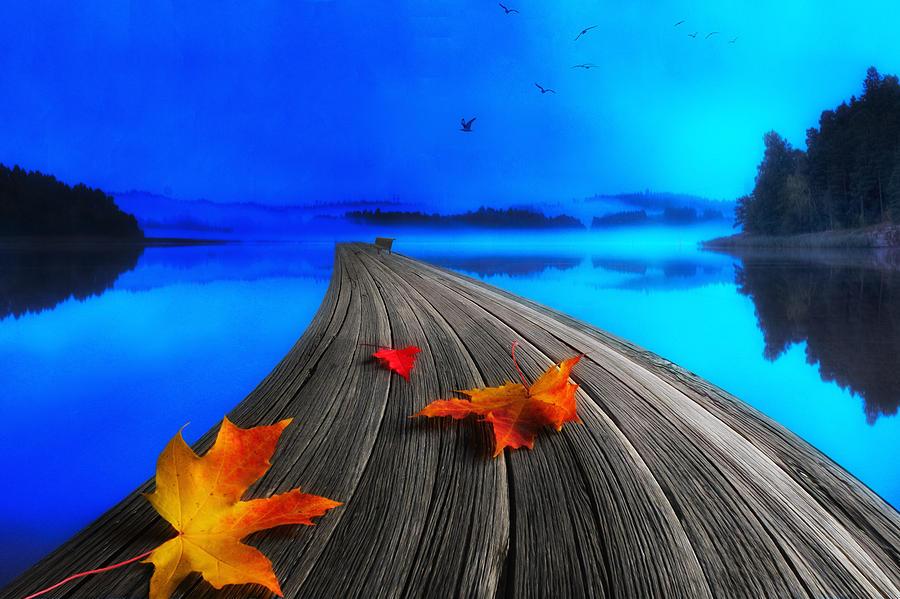 Beautiful Autumn Morning Photograph