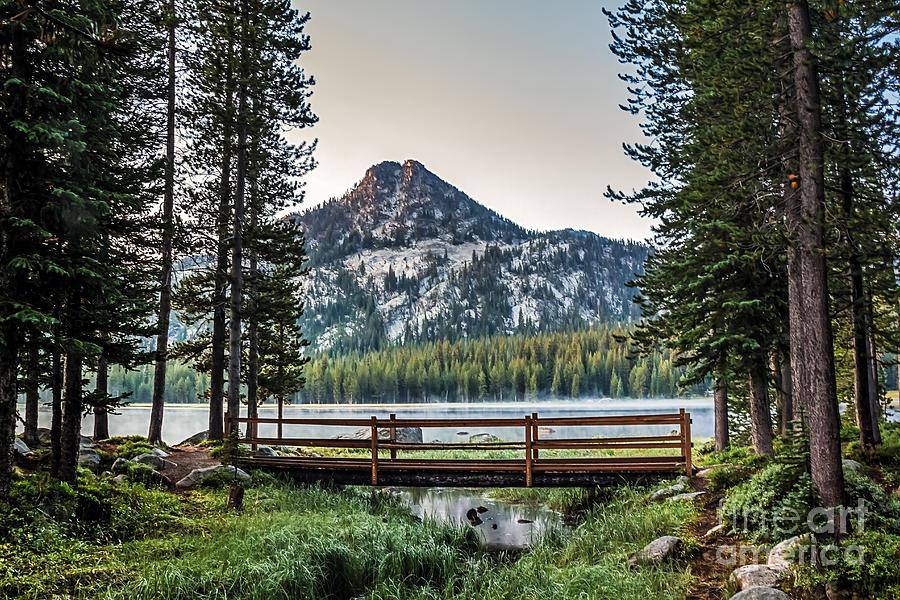 Beautiful Bridge View Photograph