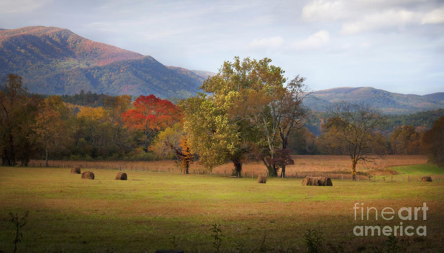 Beautiful Cades Cove Photograph