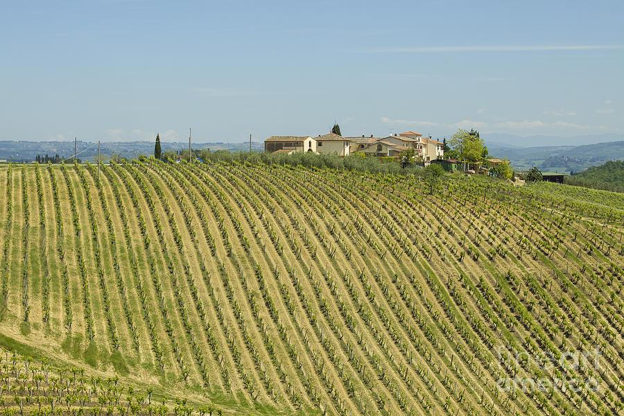 Beautiful Chianti Region In Tuscany Photograph