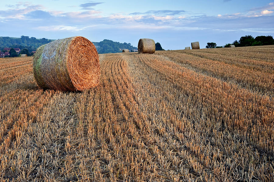 Beautiful Golden Hour Hay Bales Sunset Landscape Photograph