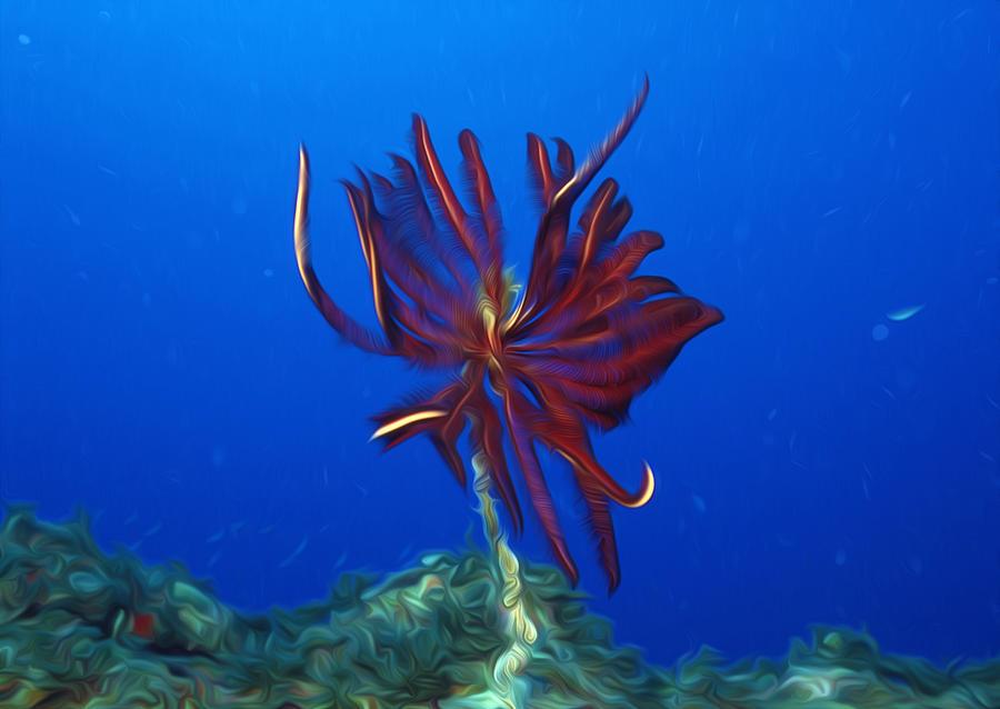 Beautiful Marine Plants 1 Painting