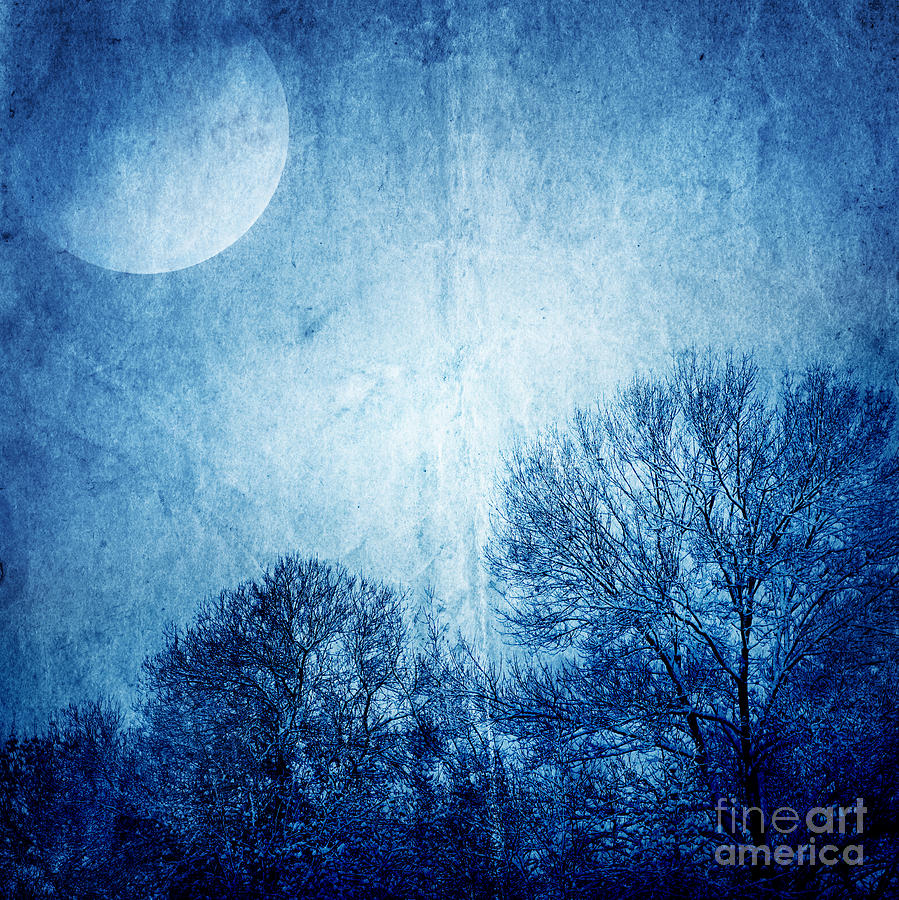 Beautiful Moonlight Photos Photograph  - Beautiful Moonlight Photos Fine Art Print