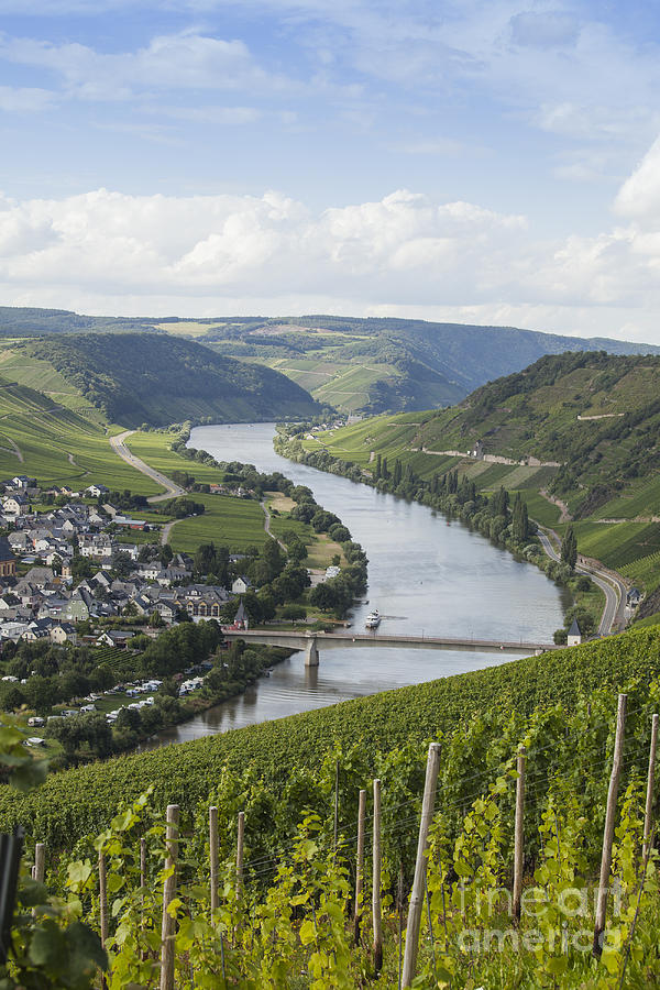 Beauty Photograph - Beautiful Mosel River by Patricia Hofmeester