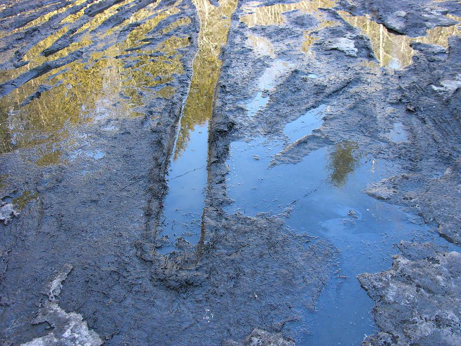 Beautiful Mud Season Photograph