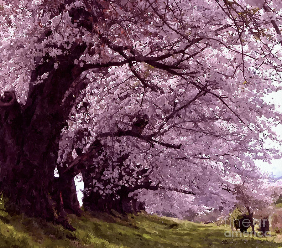 Beautiful Sakura Tree is a painting by Lanjee Chee which was uploaded ...