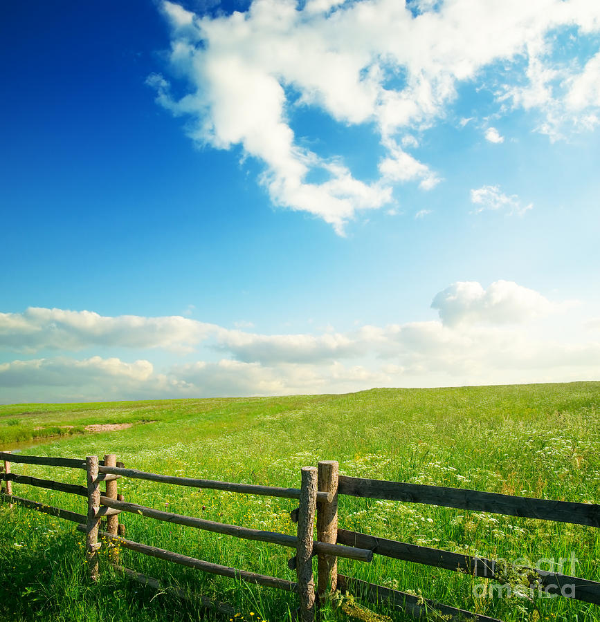 Beautiful Sky On Greens Landscape Photograph