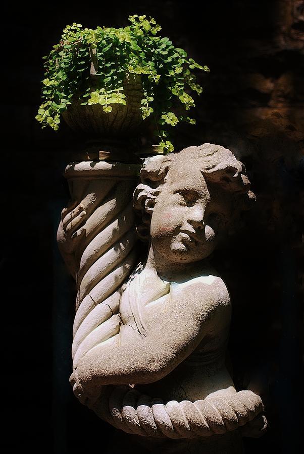 Beautiful Statue Photograph