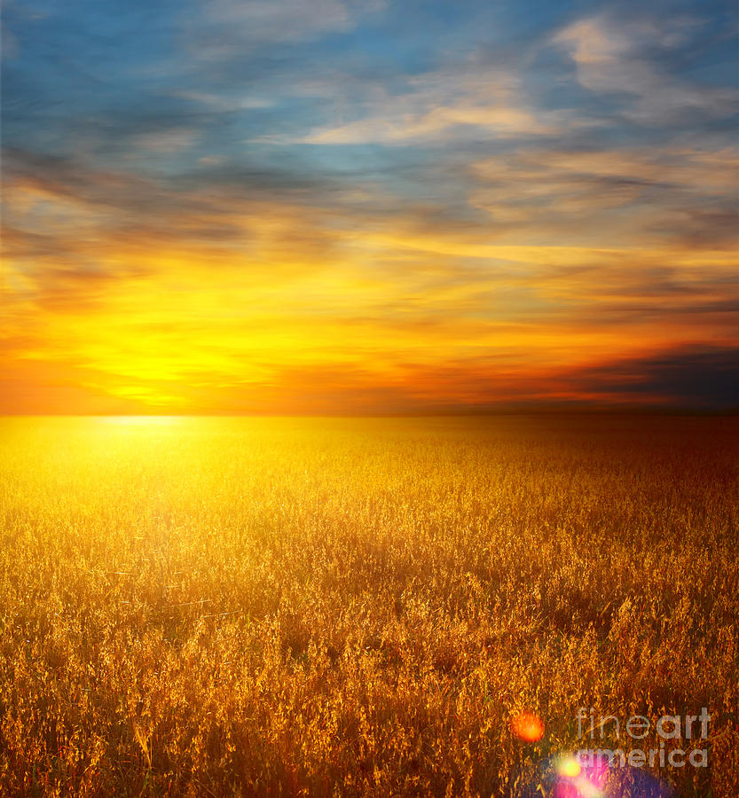 Beautiful Sunset Paintings Photograph  - Beautiful Sunset Paintings Fine Art Print