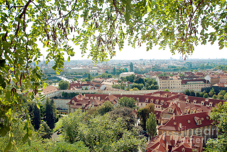 Beautiful View Of Prague Photograph  - Beautiful View Of Prague Fine Art Print