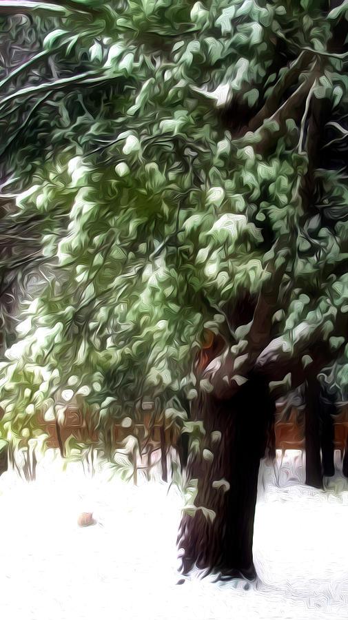 Beautiful Winter Tree Painting