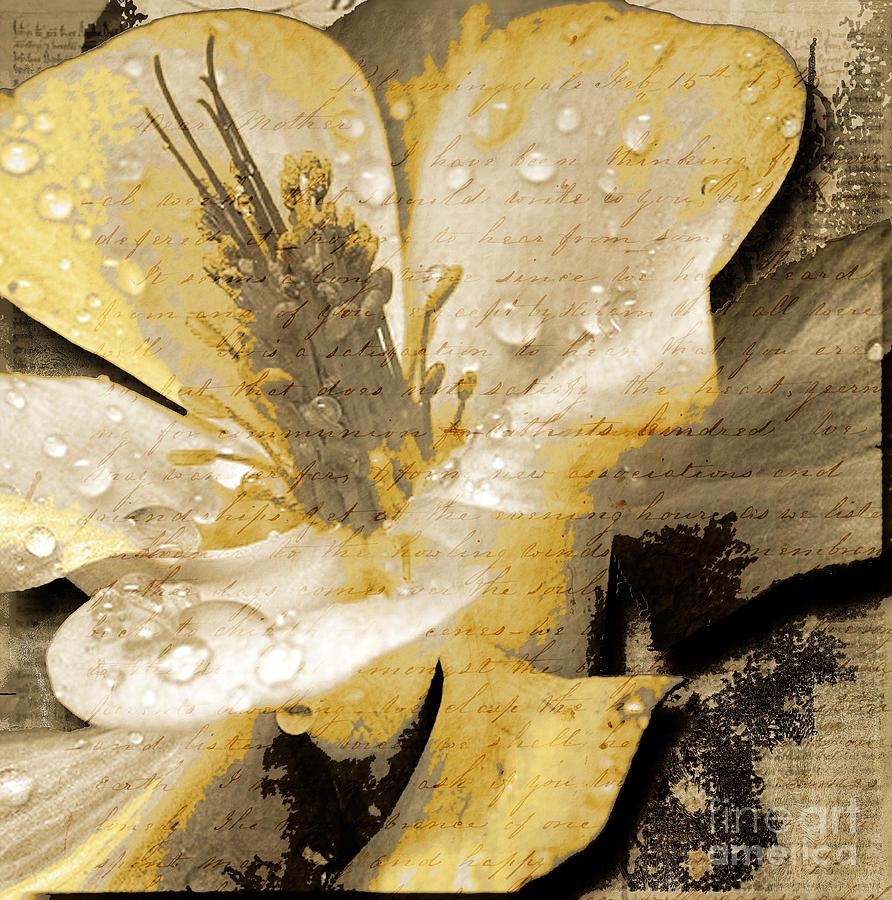 Mixed Media - Beauty IIi by Yanni Theodorou