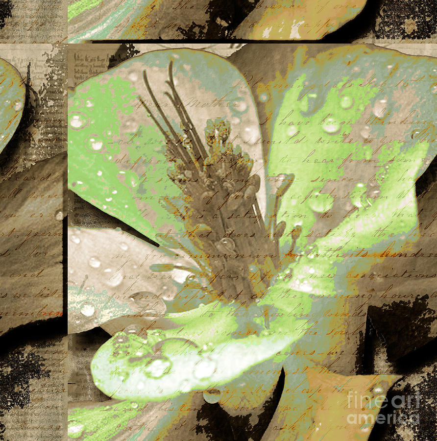 Beauty X Mixed Media  - Beauty X Fine Art Print